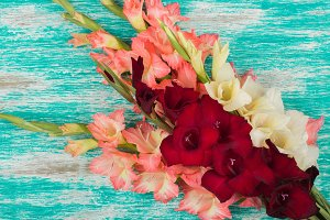 The bouquet of colored Gladiolus on the wooden table