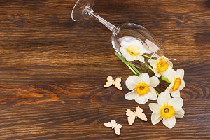Wineglass with narcissus on the wooden background