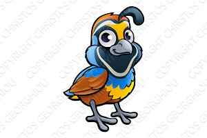 Quail Bird Cartoon Character