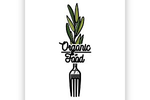 Color vintage organic food emblem