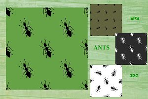 Ants background pattern