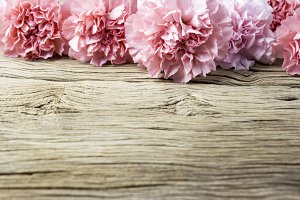 Carnation flowers on old wood
