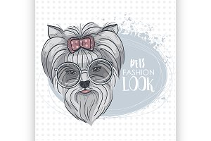 Vector pets fashion look