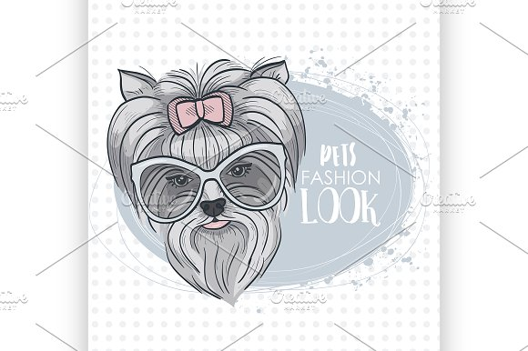Vector Pets Fashion Look