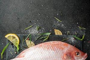 Raw fish red tilapia