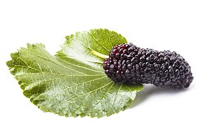 Mulberry berry