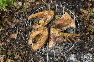 Cooking barbecue in the woods. Cooking fish in nature.