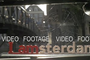 I amsterdam and spider web