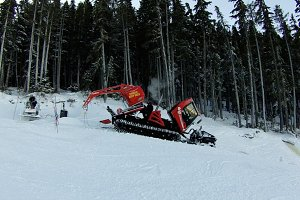 Snowcat napping on a mountain