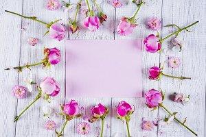 Frame of beautiful pink rose