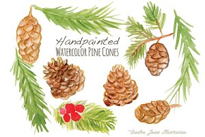 Watercolor Pinecones