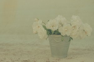 Painterly roses in a bucket