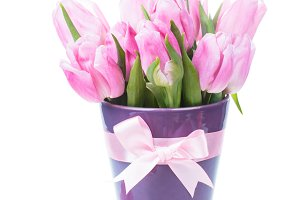 Tulips and eggs isolated