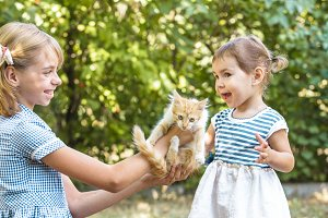 Girl play with kitten