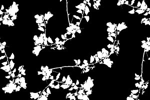 Black and White Floral Collage Pattern