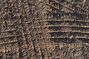 Tire Tracks on Gravel