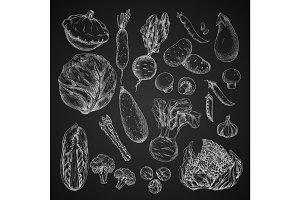 Vegetable, bean and mushroom sketch on chalkboard