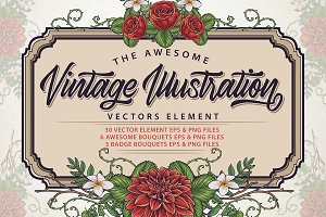 Vintage Illustration Vectors Element