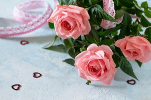 Beautiful fresh pink rose flowers