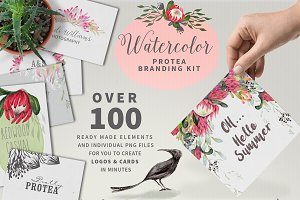 WATERCOLOR Protea Logo & Card Kit