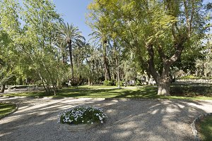 Municipal park of Elche