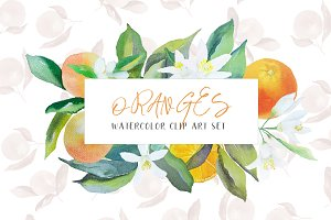 Oranges watercolor clip art