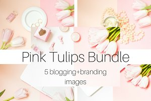 Pink Tulips Bundle