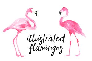 Illustrated Flamingos