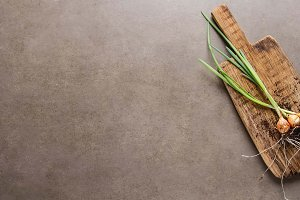 Young green onion with a root. Dark gray background. Summer food.