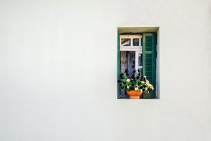 The window with curtains and flowers