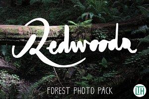 Redwoods Photo Pack