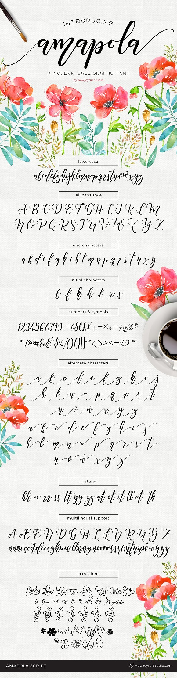Amapola Script Font Fonts Creative Market