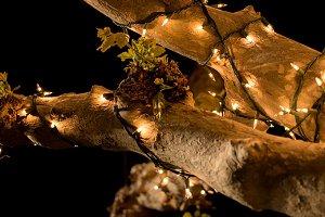 Night time lights