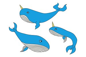 Cute hand drawn cartoon characters of narwhal whales
