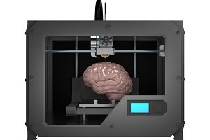 brain in 3d printer isolated on white 3d rendering