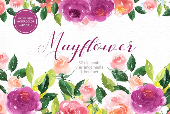 Mayflower Floral Watercolor Clipart
