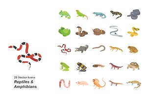 Reptiles & Amphibians color icons