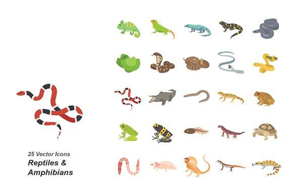 Reptiles Amphibians Color Icons