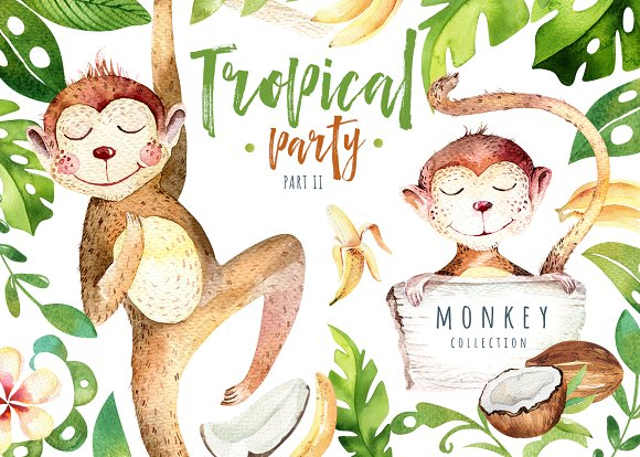 Tropical Party II Monkey Collection