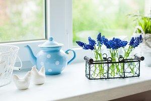 The kitchen windowsill