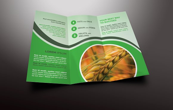 agriculture tri fold brochures templates creative market