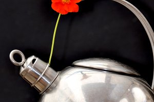 Kettle  and orange flower