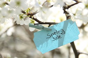 Spring sale Tag and white flowers in a spring sunny day