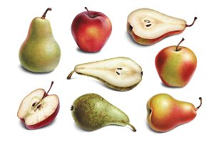 Illustrations of pears and apples