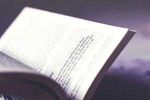 Winter Morning Read