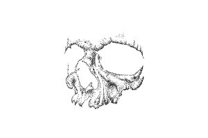 Abstract dotwork grunge skull.