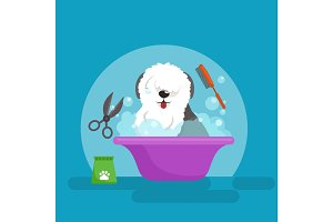 Dog hair hygiene. Vector Illustration Set, Pet Grooming and care