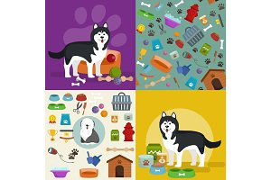 Pet shop, dog goods and supplies, store products for care