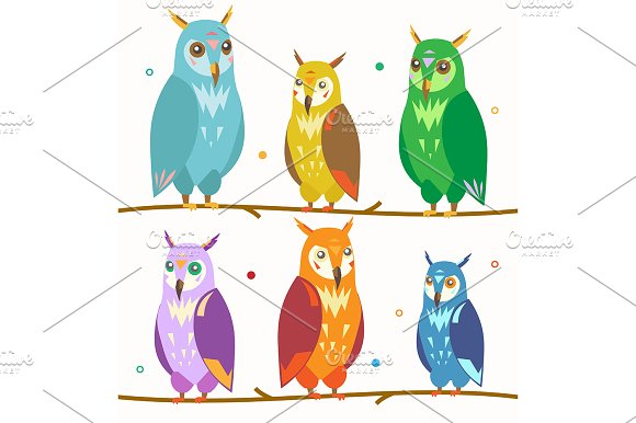 Cute Colorful Owl Set On The Branch