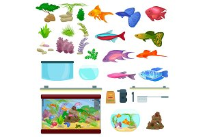 Fish tank, aquarium with water, animals, algae, corals, equipment